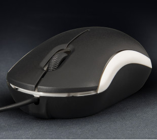 Миша Frime FM-010 чорно-біла USB